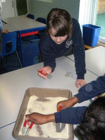 Separating rice and paper clips