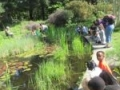 Eltham Environmental Centre